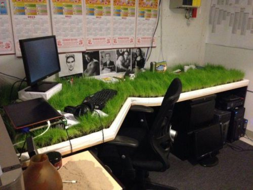 стол с травой.2