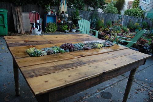 стол с травой.3