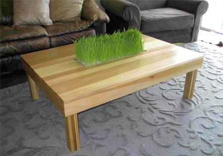 стол с травой.8